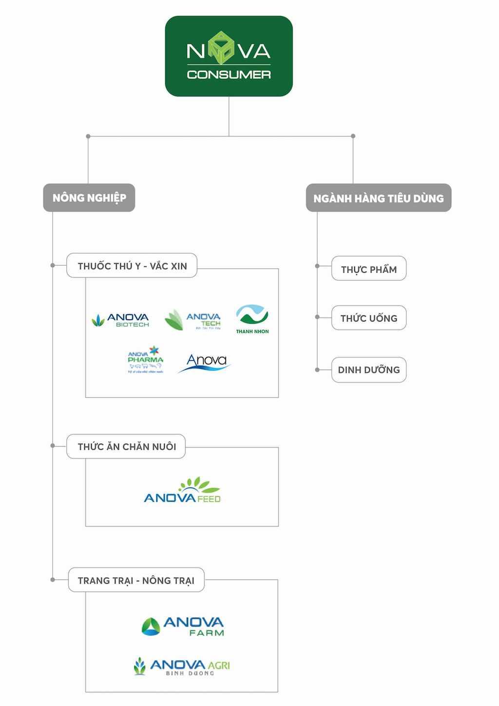 Hệ sinh thái của Nova Consumer Group